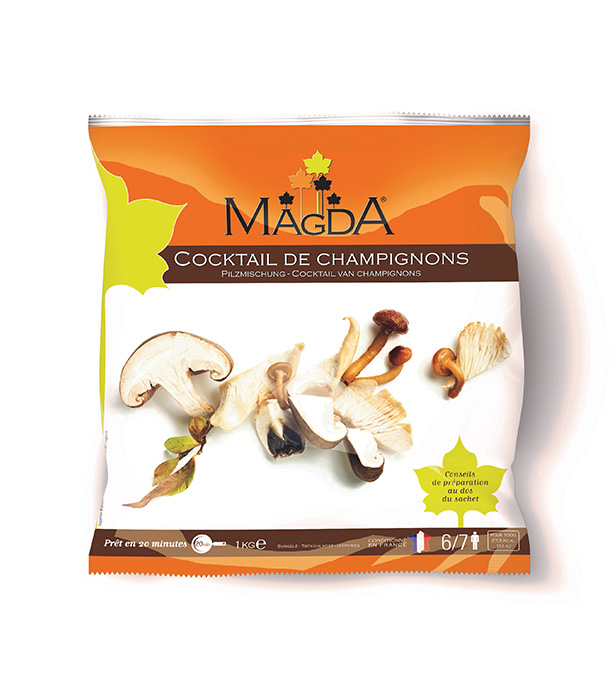 Large cep pieces Magda