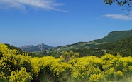 Ausblick in der Provence
