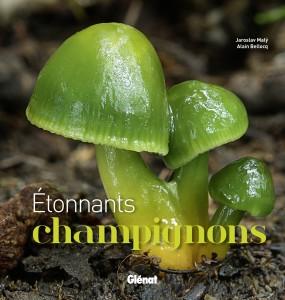 « Etonnants Champignons » (Glénat)